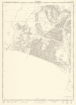 Petone [cartographic material] / drawn by A.P. Hunter