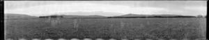 Farm landscape, Southland
