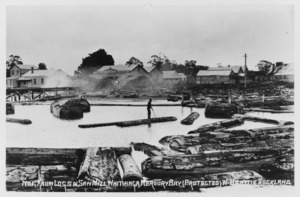 Young, L R : Photograph of the saw mill at Whitianga