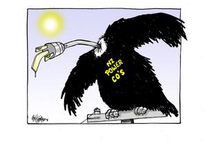 NZ Power Co's