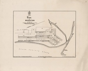 Town of Brighton, Nelson, N.Z. / surveyed by W.C. Bull, 1867; drawn by D.J. Brown, photolithographed by A. McColl ;.J.S. Browning Chief Surveyor Nelson