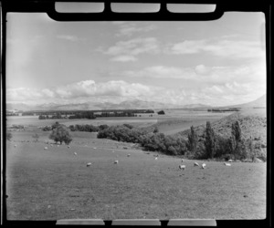 Near Lumsden, Southland District