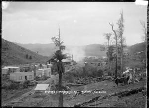 Stevens & McPherson's mill at Manunui