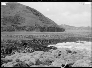 Mussel Rocks (Te Kaha Point), near Raglan, 1910 - Photograph taken by Gilmour Brothers