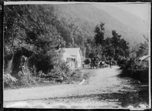 View of McDonald's house at Taramakau, West Coast
