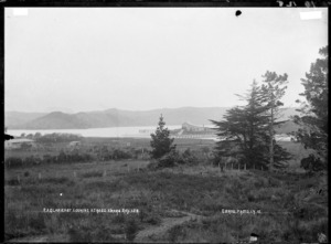 Raglan East, looking across Awaro Bay, 1910 - Photograph taken by Gilmour Brothers
