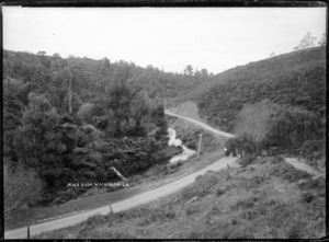 Mile Bush, Waingaro, near Raglan - Photograph possibly taken by Gilmour Brothers