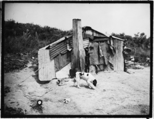 Photograph of `Poorest housing'