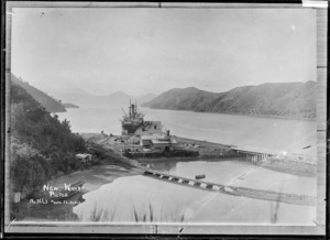 New wharf at Picton - Photograph taken by J L Jones