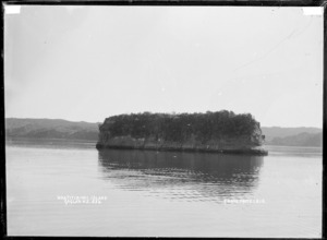 Whatitirinui Island, Raglan Harbour, 1910 - Photograph taken by Gilmour Brothers