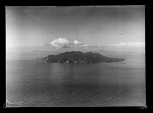 Little Barrier Island, Hauraki Gulf, Auckland Region