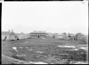 Green Street, Raglan, 1910 - Photograph taken by Gilmour Brothers