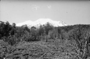 Egmont - Ruapehu, 1915-1916