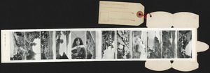 Various photographers :[New Zealand mail. Scenes of New Zealand. ca 1910-1915].