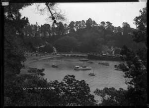 Ferry steamer and pleasure craft at Mansion House Bay, Kawau Island