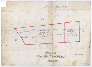 [Creator unknown] :Plan of Rangitoto Tuhua 21B2A2, Block VIII Tuhua S.D. [ms map]. [n.d.]