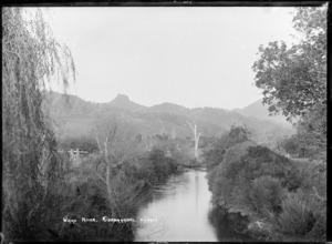 Waiau River, Coromandel