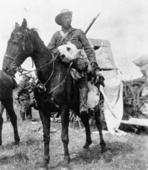 Unidentified scene from the South African War