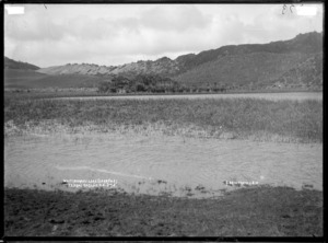 Waitamoumou Lake on Darrows Station, Te Akau, near Raglan, 1910 - Photograph taken by Gilmour Brothers