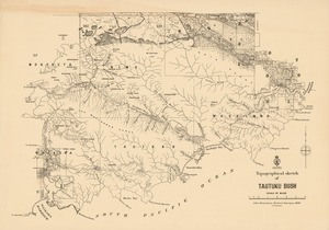 Topographical sketch of Tautuku Bush / John Strauchon, District Surveyour, 1886..