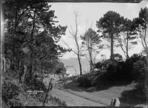 General view of Kawau Island
