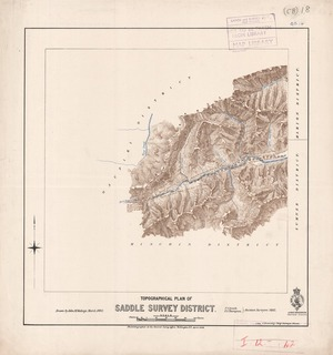 Topographical plan of Saddle Survey District / F.S. Smith, F.A. Thompson assistant surveyors ; drawn by John M. Malings.