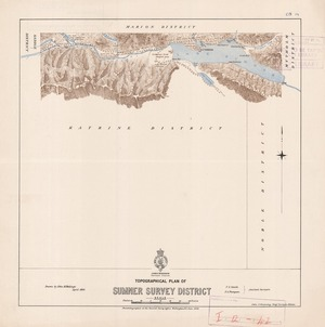 Topographical plan of Sumner Survey District / F.S Smith, F.A Thompson, assistant surveyors ; drawn by John M. Malings.