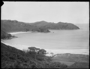 Overlooking a bay, probably in the Northland region