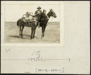 Mounted signalman cable laying in the Egyptian desert.