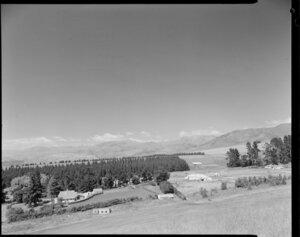 Sheep farm of Hugh Wynter, Normandale