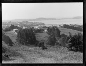 View of Waitemata Harbour and Hobson Bay, Auckland, featuring large, two-storied houses, paddocks, and trees