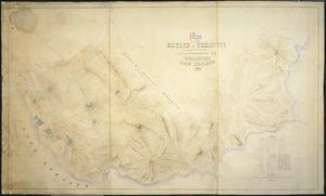 Campion, E J, fl 1871 :Plan of an estate at Terawiti, belonging to the late James McManaman, Esq., Wellington New Zealand, 1869 [ms map]. E. J. Campion, architect and surveyor, August 1869