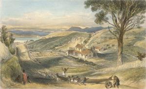 Brees, Samuel Charles 1810-1865 :View looking down Hawkestone Street, Wellington, with Mr Brees' cottage. [1845 ?] Engraved by Henry Melville. Drawn by S C Brees. [London, 1847]