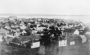 View of houses in central Auckland