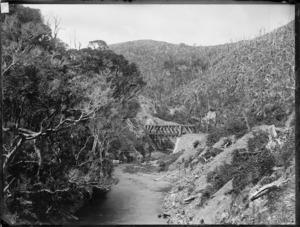 Rimutaka Range, Wellington region, New Zealand