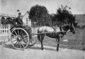 Henry John Lancaster with horse Polly in trap outside 385 Karori Road, Wellington