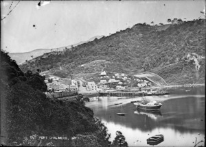 View of old Port Chalmers looking over Koputai Bay, in 1867.