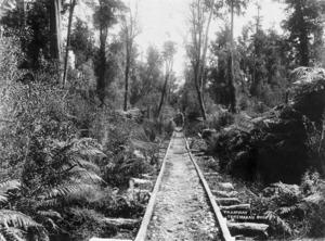 Wagon on Greymouth to Kumara wooden tramway in Taramakau bush