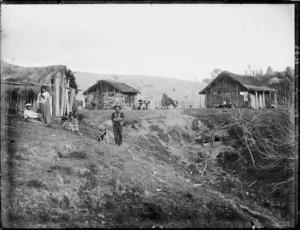 Scene at Purangi Pa, Taranaki region