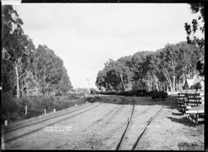 Railway line by the saleyards at Ngaruawahia, 1910 - Photograph taken by G & C Ltd