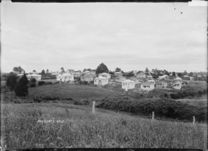 Houses at Richmond Avenue, Northcote, Auckland