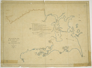 Nops, John George, d 1847 :Plan of the road taken by the combined forces to Rua Peka Peka, under Colonel Despard 99th Regt. [ms map]. By Mr. J.G. Nops (Master), assisted by Mr. Groves (Mid.), 1846.
