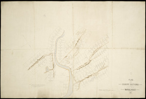 [Carrington, Wellington, 1814-1890 or Thomas, Joseph, b. 1803] :Plan of the country sections laid out on the Wanganui [Whanganui] [ms map]. 1841.