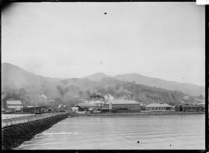 View of Moanataiari, Thames from the Goods Wharf