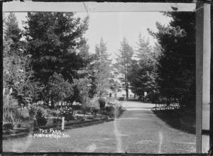 Queen Elizabeth Park, Masterton