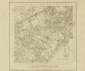 Leeston Survey District [electronic resource] / drawn by H. McCardell.