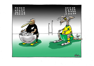 All Blacks. Wallabies