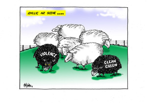 "Idyllic NZ Scene…two black sheep ""Violence"" and ""Clean Green"" graze in the flock of white sheep"