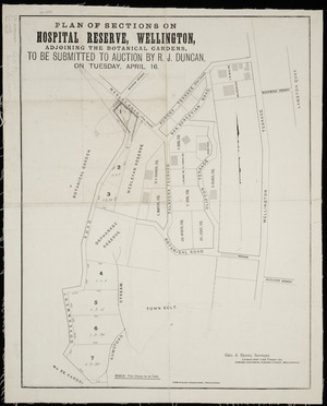 Plan of sections on Hospital Reserve Wellington, adjoining the Botanical Gardens : to be submitted to auction by R.J. Duncan on Tuesday, April 16 / [surveyed by] Geo. A. Beere.