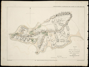 Plan of Russell, Bay of Islands, New Zealand [cartographic material] / surveyed by Felton Mathew, 1841.